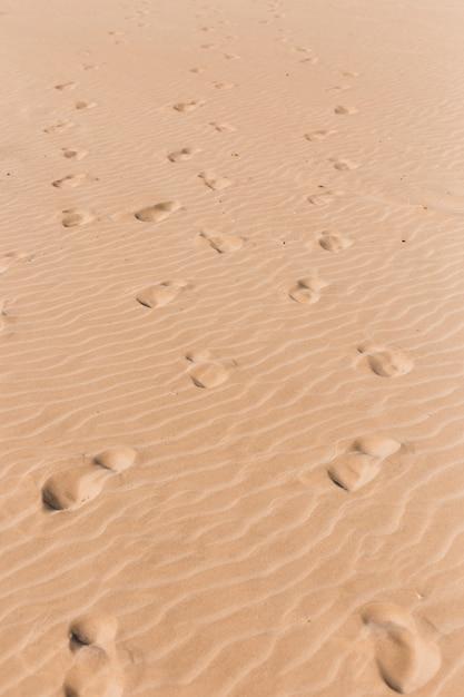 Koncepcja plaży ze śladami stóp Darmowe Zdjęcia