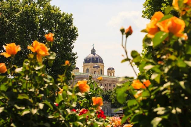 Kopuła muzeum naturhistorisches w wiedniu Premium Zdjęcia
