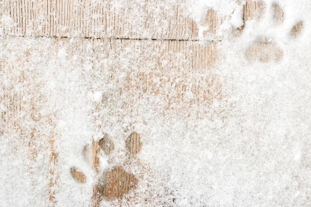 Kotów Odciski Stopy Na Drewnianym Tle Z śniegiem Premium Zdjęcia