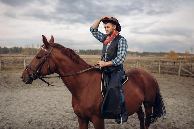Kowboj Na Koniu W Pustynnej Dolinie, Western Premium Zdjęcia