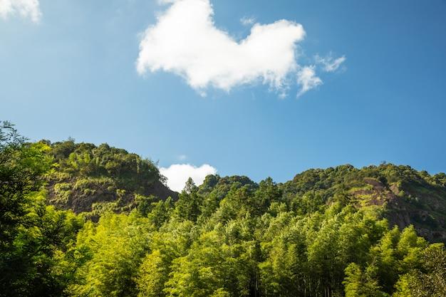 Krajobraz Górskiego Szczytu Premium Zdjęcia