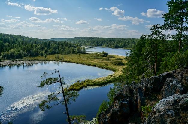 Krajobraz jeziora z drzewami Premium Zdjęcia