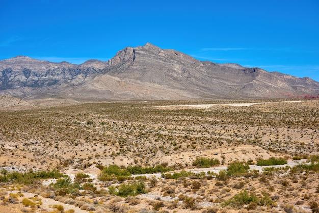 Krajobraz W Red Rock Canyon, Nevada, Usa Premium Zdjęcia