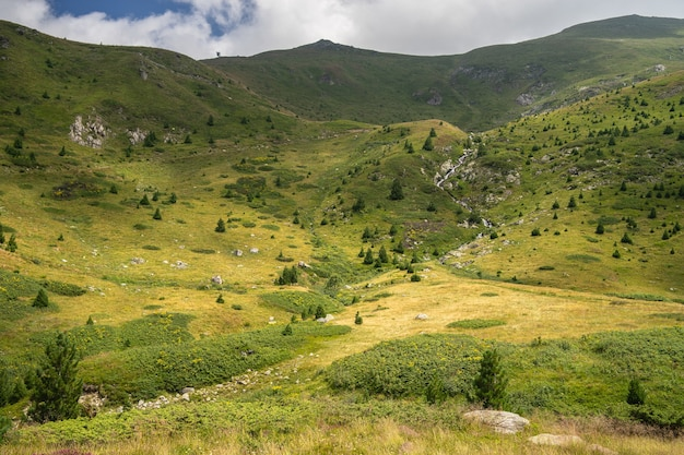 Krajobraz Wzgórz Pokrytych Trawą I Drzewami Pod Zachmurzonym Niebem I światłem Słonecznym W Ciągu Dnia Darmowe Zdjęcia