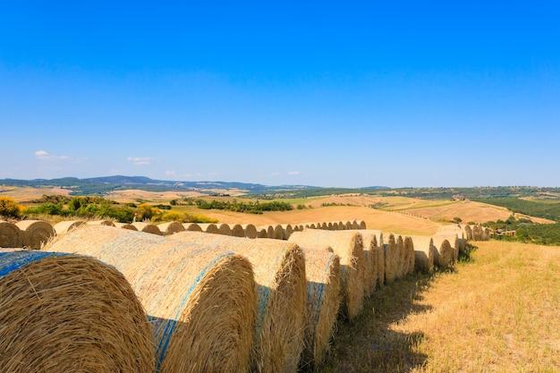 Krajobraz Wzgórz Toskanii, Włochy. Wiejska Włoska Panorama. Premium Zdjęcia