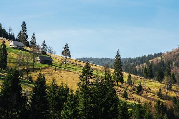Krajobraz zielonych górskich wzgórz porośniętych lasem z małymi domkami. Premium Zdjęcia