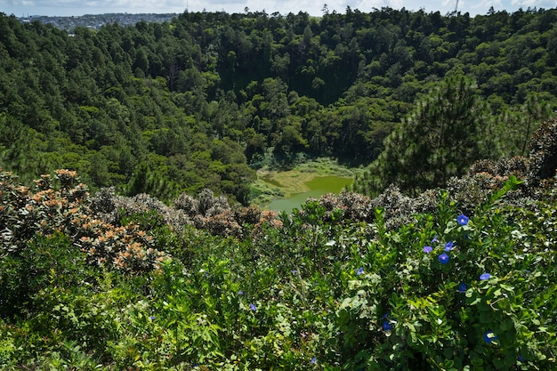 Krater Wulkanu Trou Aux Cerfs Premium Zdjęcia