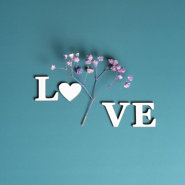 Kreatywne, Płaskie Ukształtowanie Słowa Miłość Na Delikatnym Kolorowym Tle Z Naturalnymi Roślinami. Premium Zdjęcia