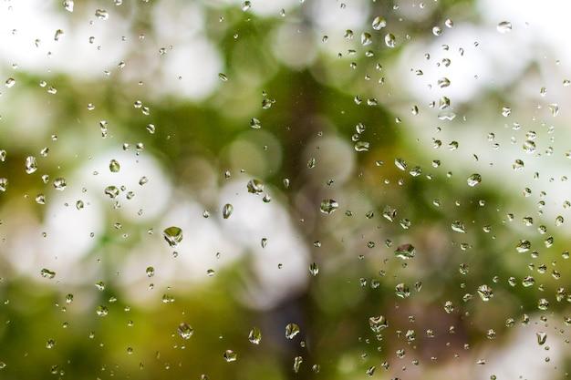 Krople deszczu na tle okna i zieleni. Premium Zdjęcia