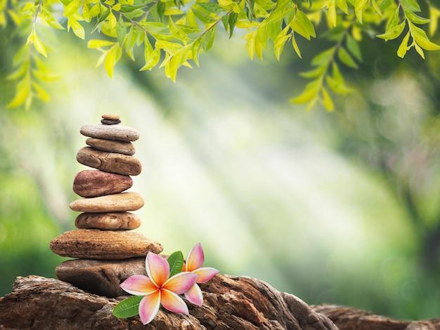 Kupie Mały Kamień Jak Piramida I Różowy Kwiat Plumeria Premium Zdjęcia