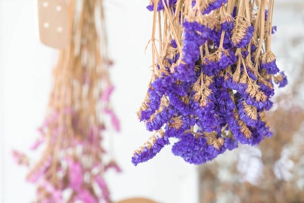 Kwiat Statice Darmowe Zdjęcia
