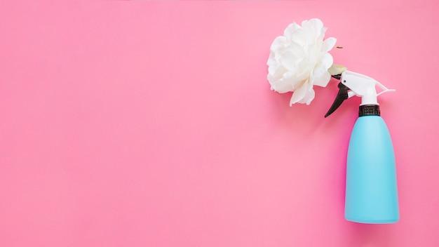 Kwiat W Pobliżu Zraszacz Butelkowy Darmowe Zdjęcia