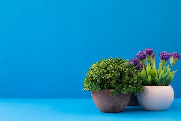 Kwiatów Garnki Na Błękitnym Tle Z Kopii Przestrzenią. Premium Zdjęcia