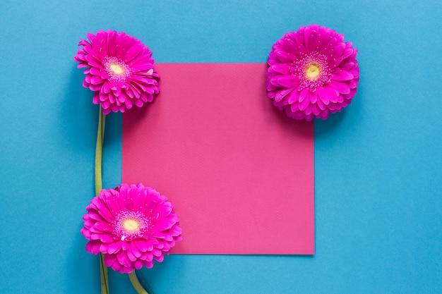 Kwiaty Gerbera I Różowy Pusty Kawałek Papieru Darmowe Zdjęcia