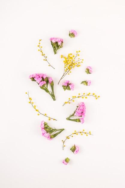 Kwiaty na białym tle - cześć wiosna i cześć lato Premium Zdjęcia