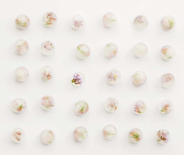 Kwiaty zablokowane w lodowych kulach Darmowe Zdjęcia
