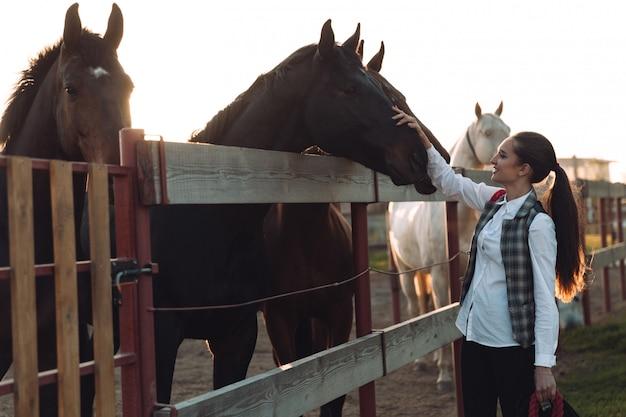Ładna Młoda Kobieta Dba O Swojego Konia. Darmowe Zdjęcia