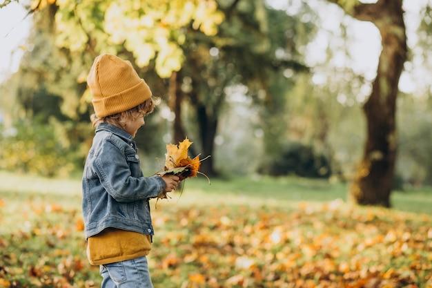 Ładny Chłopiec Bawi Się Liśćmi W Jesiennym Parku Darmowe Zdjęcia