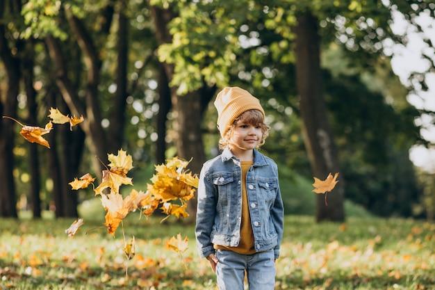 Ładny Mały Chłopiec Bawi Się Liśćmi W Jesiennym Parku Darmowe Zdjęcia