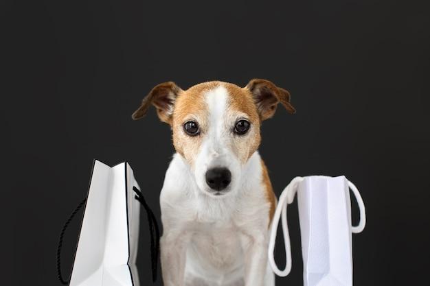 Ładny Pies Z Białymi Papierowymi Torbami Z Zakupami Siedzi I Patrzy W Kamerę Na Czarno. Premium Zdjęcia