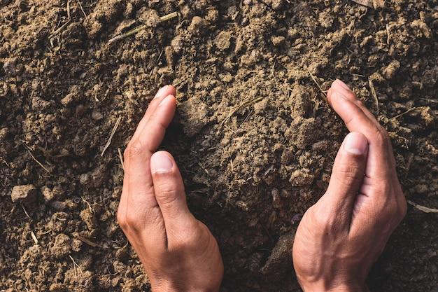 Łajno Lub Obornik W Rękach Rolników Do Uprawy Roślin I Drzew. Premium Zdjęcia