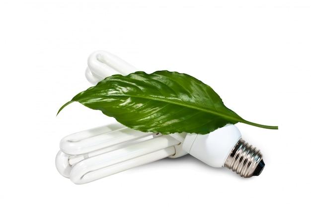 Lampy Fluorescencyjne I Zielony Liść Na Białym Tle Premium Zdjęcia