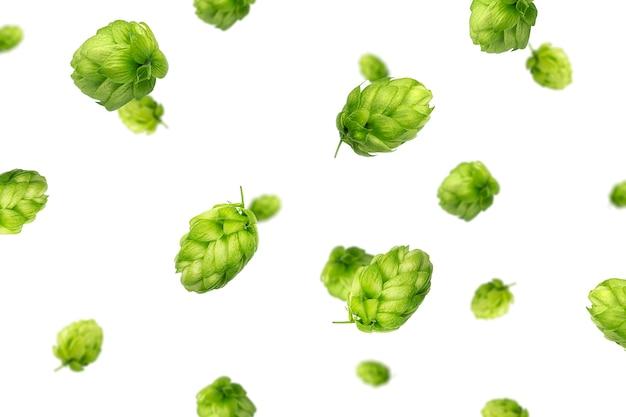Latający Zielony Chmiel Na Białym Tle Premium Zdjęcia