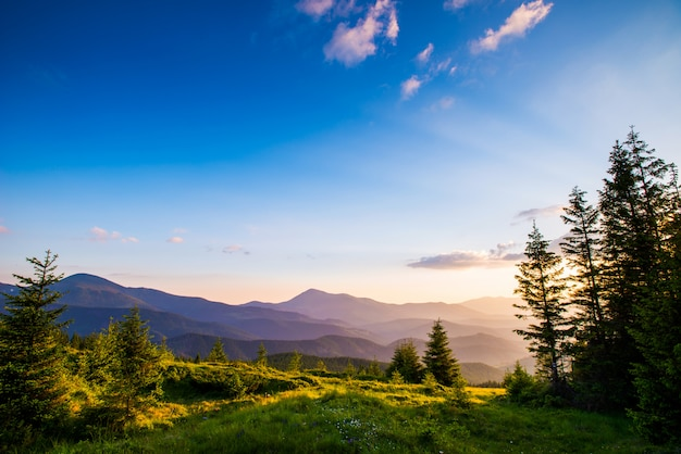Letni krajobraz w górach Premium Zdjęcia