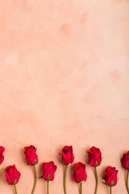 Leżał Płasko Z Wiosennych Róż Z Miejsca Kopiowania Darmowe Zdjęcia