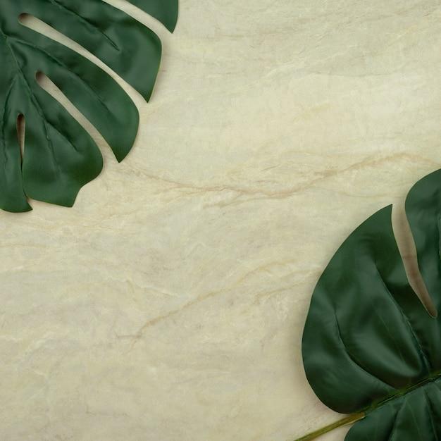 Liść monstera na pusty brązowy matowy marmur Premium Zdjęcia