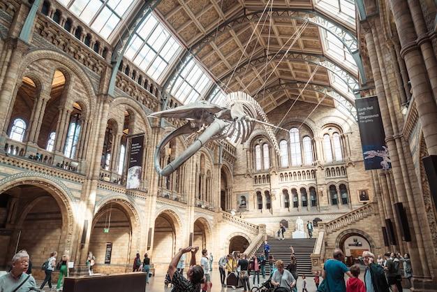 London 4 Września 2019 R. Ludzie Odwiedzają Muzeum Historii Naturalnej W Londynie. Premium Zdjęcia