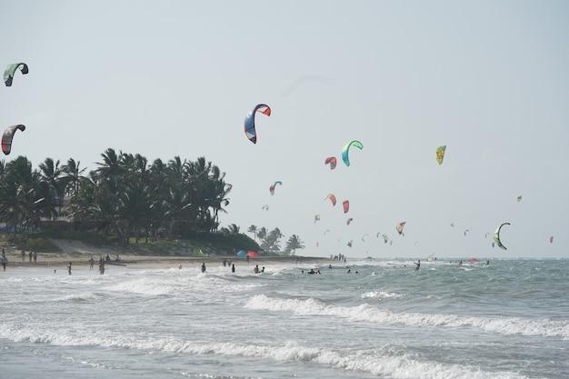 Ludzie Kiteboarding Na Plaży W Pobliżu Drzew Na Dominikanie Darmowe Zdjęcia