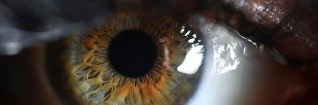 Ludzkie Zielone Oko Siatkówki Supermakro Zbliżenie. Sprawdź Koncepcję Widzenia Premium Zdjęcia