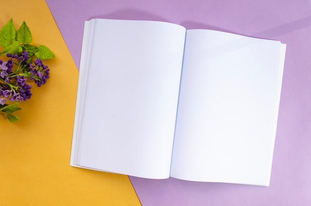 Magazyn widokowy makieta z kolorowym tłem Darmowe Zdjęcia