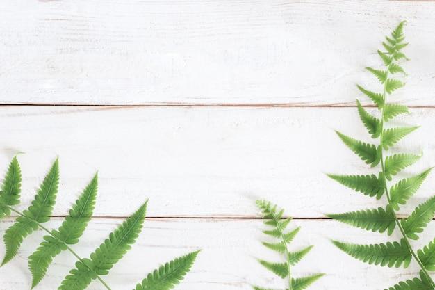 Makiety, Liść Paproci Na Białym Tle Drewniane Deski, Minimalistyczny Premium Zdjęcia
