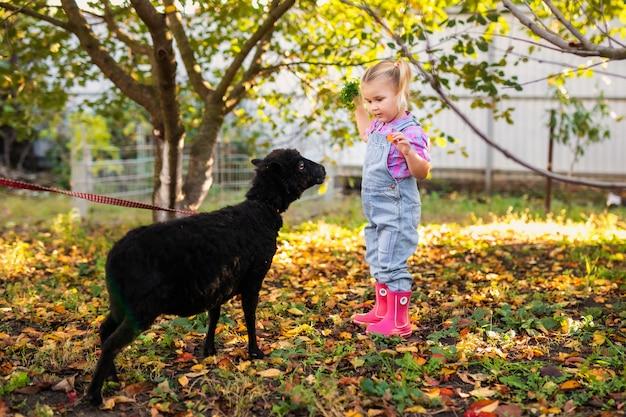 Mała Blondynka Berbecia Dziewczyna Z Dwa Warkoczami Bawić Się Domowych Czarnych Cakle I Karmi Premium Zdjęcia