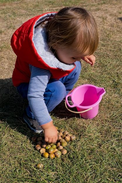 Mała Dziewczynka Zbiera żołędzie W Jesiennym Parku. Premium Zdjęcia