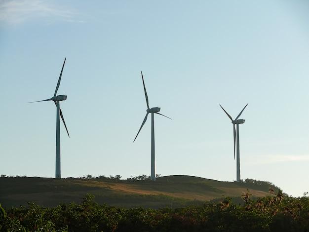 Mała farma wiatrowa Premium Zdjęcia