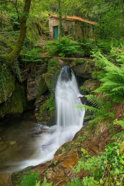 Mała rzeka we wspólnocie galicji Premium Zdjęcia