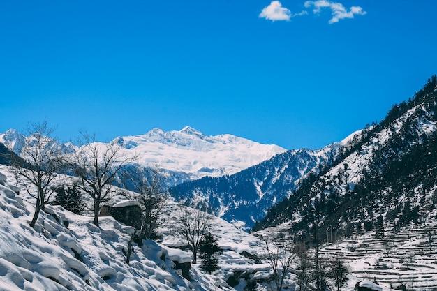 Malam Jabba I Kalam Swat Scenery Landscape Premium Zdjęcia