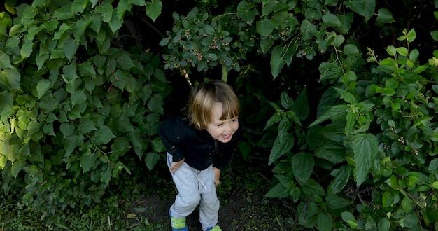 Małe Słodkie Brunetki Bawiące Się W Chowanego W Kępie Krzewów W Naturze I Pochylone Ze śmiechu Premium Zdjęcia