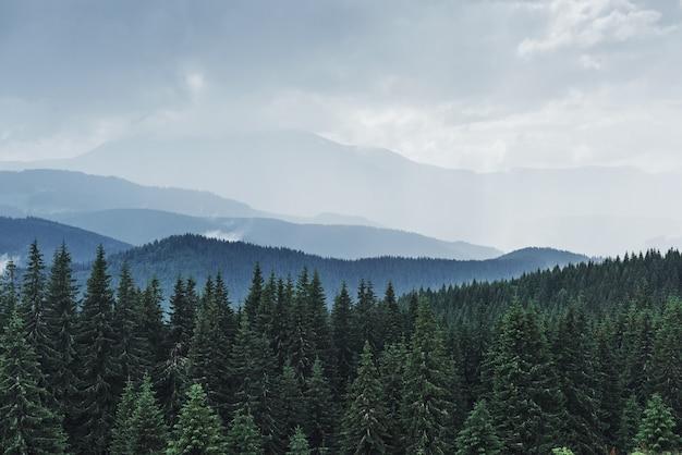 Malowniczy Krajobraz Gór Po Deszczu. Karpaty Ukrainy. Darmowe Zdjęcia