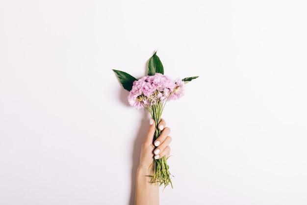 Mały Bukiet Różowych Goździków W Kobiecej Dłoni Z Manicure Na Białym Tle Premium Zdjęcia