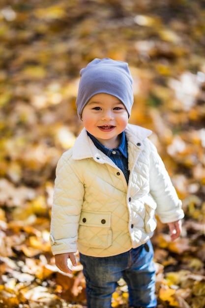 Mały Chłopiec Bawiący Się W Jesiennym Parku, Wokół Niego żółte Liście Darmowe Zdjęcia