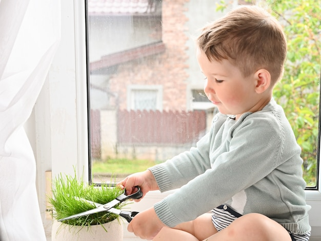 Mały Chłopiec Tnie Trawy Nożyczkami Premium Zdjęcia