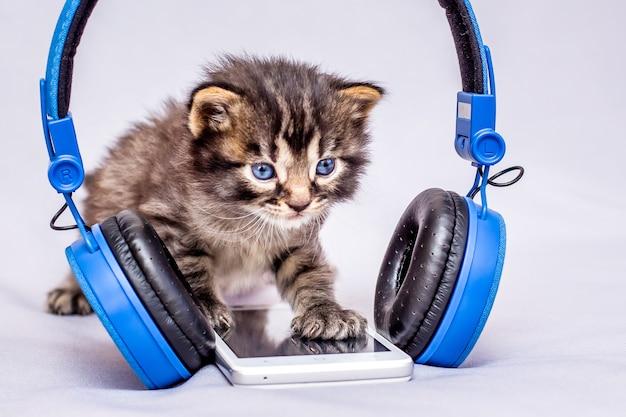 Mały Kotek W Paski W Pobliżu Telefonu Komórkowego I Słuchawek. Włącz Telefon I Słuchaj Muzyki. Opanowanie Nowoczesnych Technologii_ Premium Zdjęcia