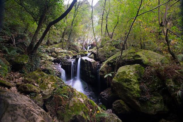 Mały Wodospad (o Nazwie Irusta) Otoczony Przez Las Góry Aiako Harriak W Kraju Basków. Premium Zdjęcia