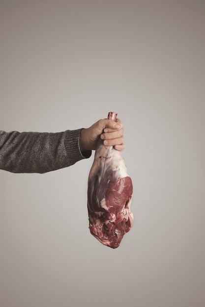 Mans Ręka W Szarym Swetrze Trzyma Islandzkiego Surowego Mięsa Jagnięcego Mięsa Nogi, Odizolowane Na Szarym Białym Tle. Dieta Paleo, żywność Ekologiczna. Darmowe Zdjęcia