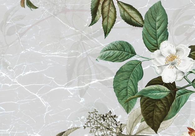 Marmur Teksturowany Z Różą Piżmową Darmowe Zdjęcia