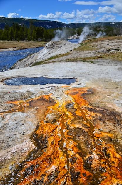 Maty Algowo-bakteryjne. Gorące źródło Termalne, Gorący Basen W Parku Narodowym Yellowstone. Wyoming, Usa Premium Zdjęcia